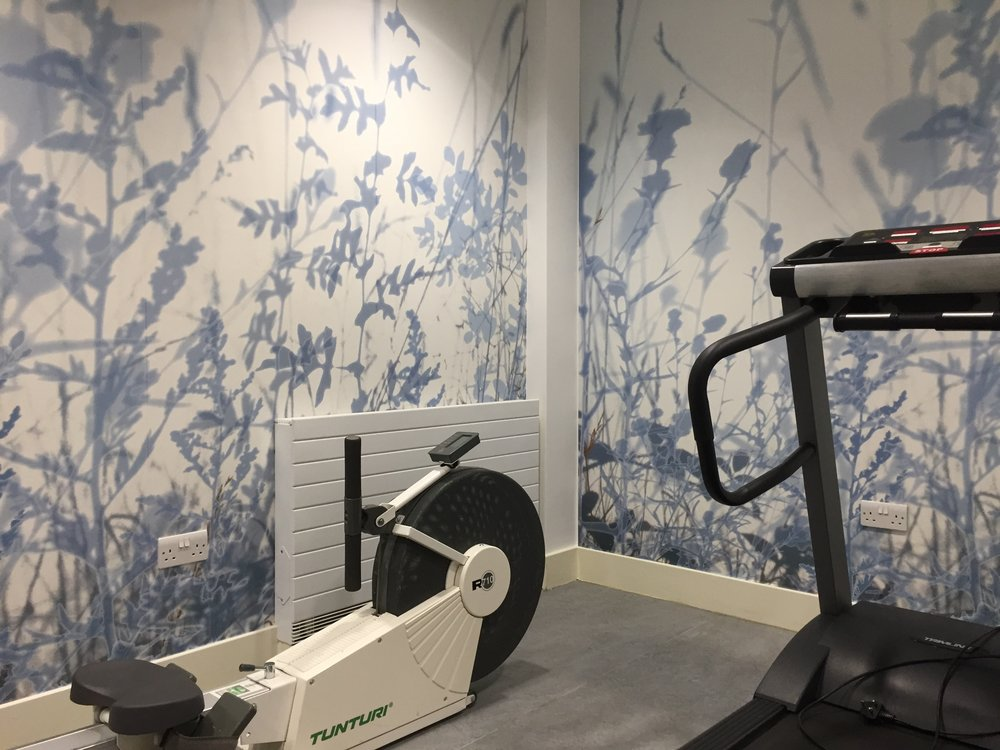 Steve Macloed - Gym - Bluebell Lodge .jpg