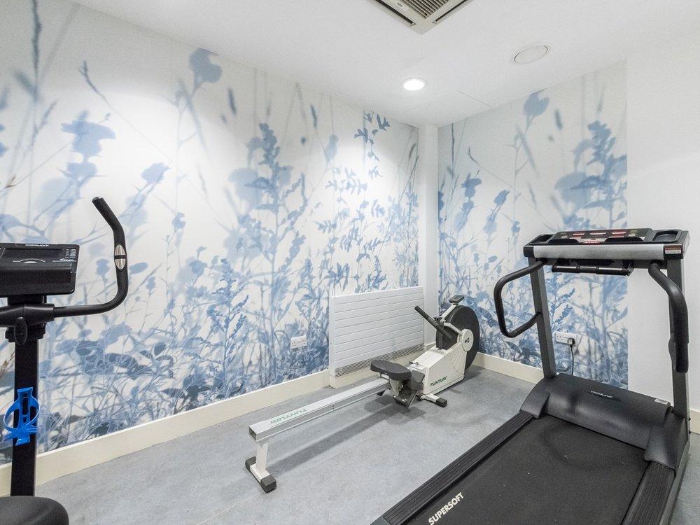 Steve Macleod - Gym, Bluebell Lodge, CNWL
