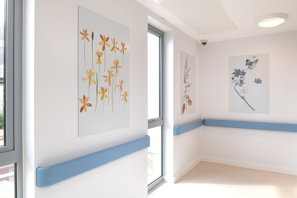Nick Knight - WIllows Communal Area, Woodlands, NSFT