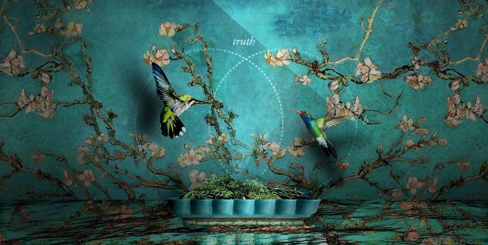 00A_HomePage_Image-slides_v01_9_aeh_hummingbird.jpg
