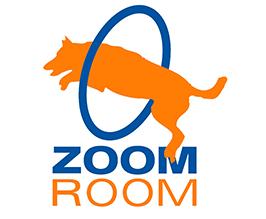 zoom-room.png