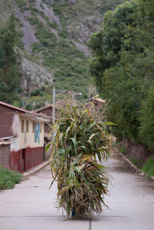 best of Peru_ (1 of 13).jpg