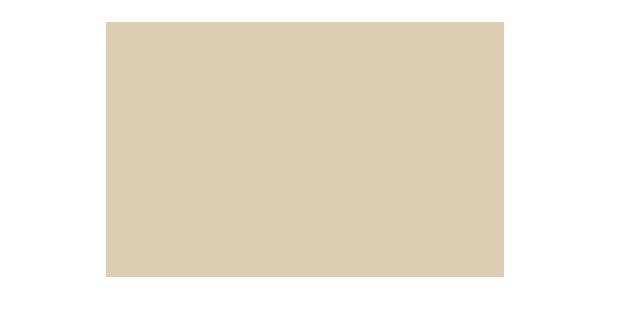 Brutocao Lion