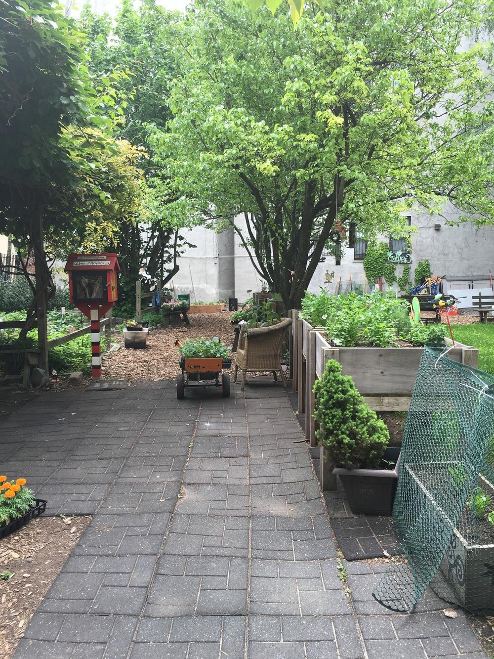 Harlem Grown's 134th Street Garden