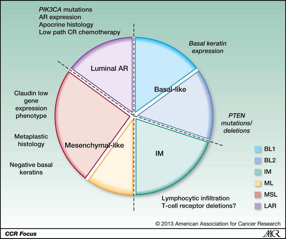 Here is the basic pie chart of Triple Negative Breast Cancer Subsets provided by Clinical Cancer Research AA Journals.