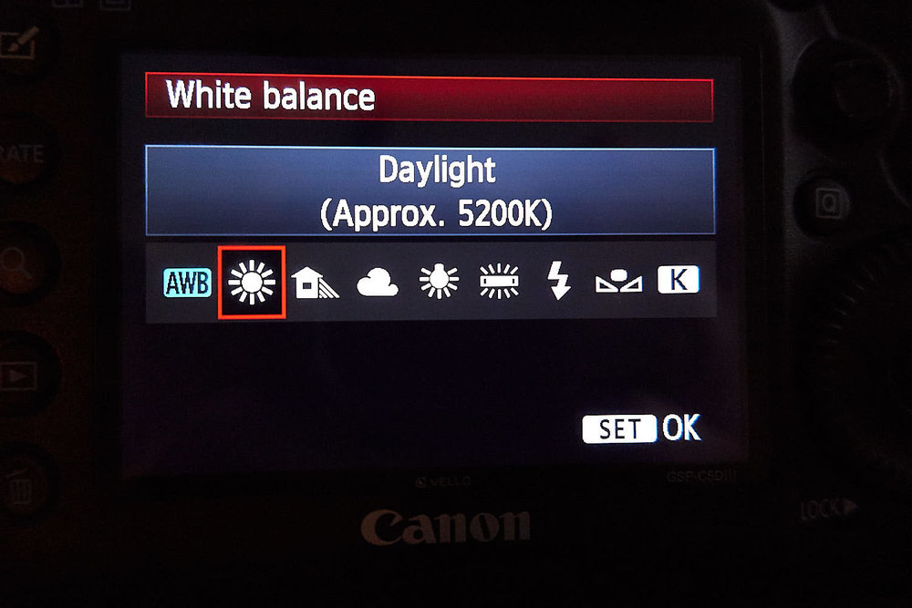 Suggested white balance setting when outside shooting in daylight. But I shoot the one next to it AWB (Auto White Balance) instead.