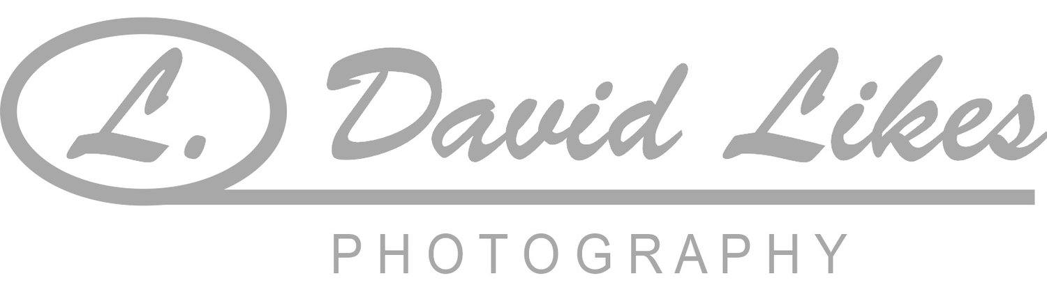 L David Likes Photography | Cincinnati Portrait and Family Photography