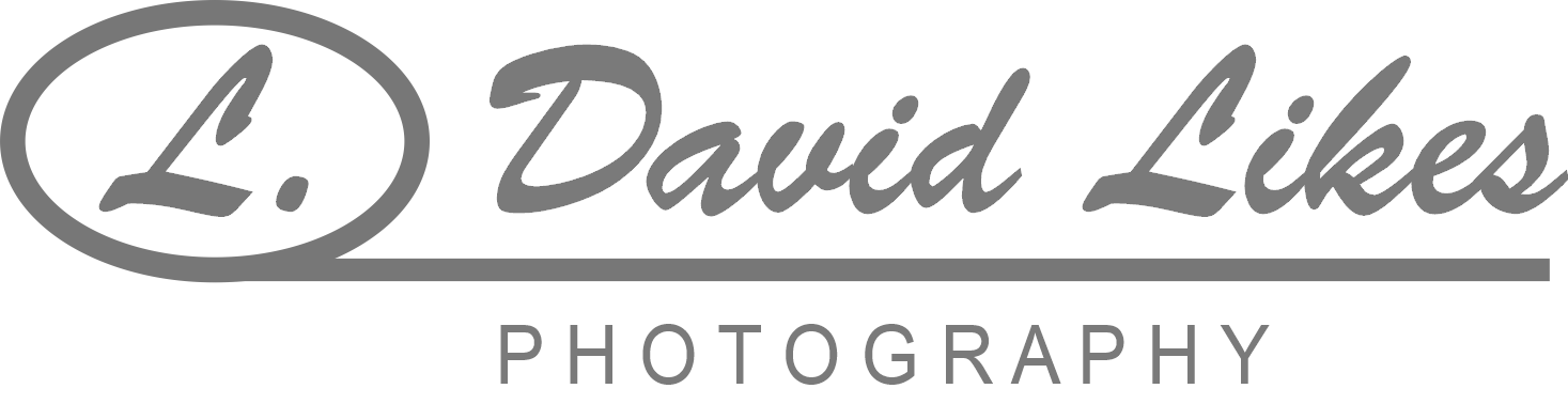 Cincinnati Family Photographer | L David Likes Photography