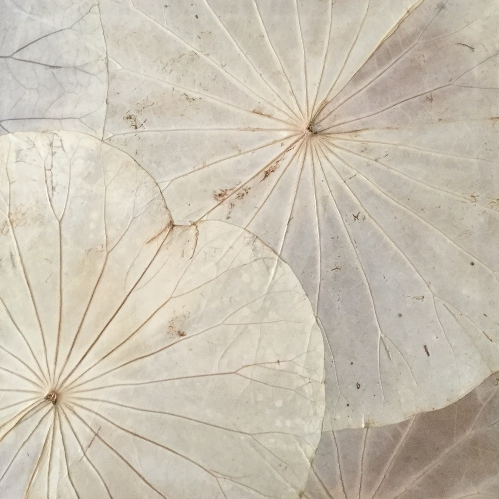 You will be provided with a beautiful 40cm x 40cm canvas, hand covered in Thailand with meticulously preserved lotus leaves.   Upgrades to larger canvas sizes available in the studio.