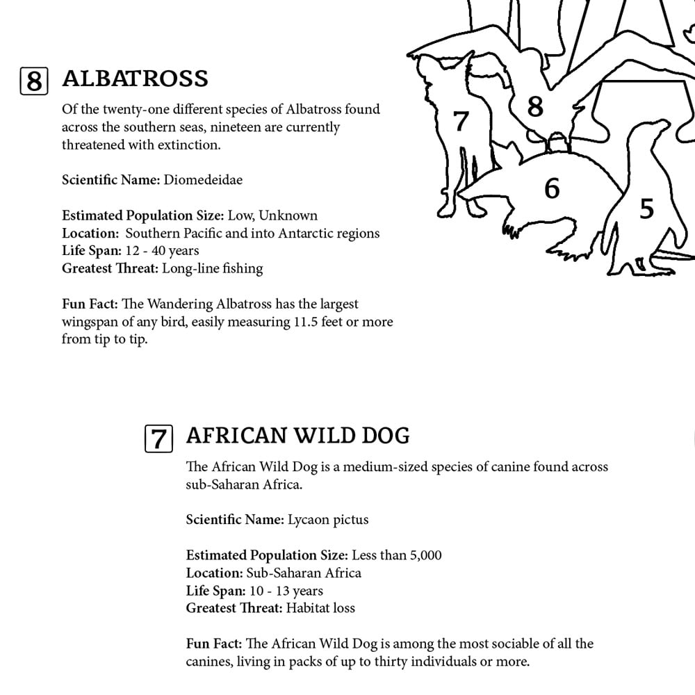 Letter A: Albatross, info page