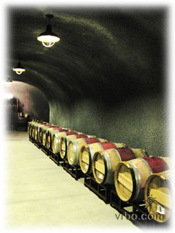 Wine Cave Barrels.jpeg