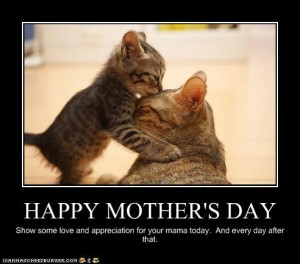 Happy-Mothers-Day-cats