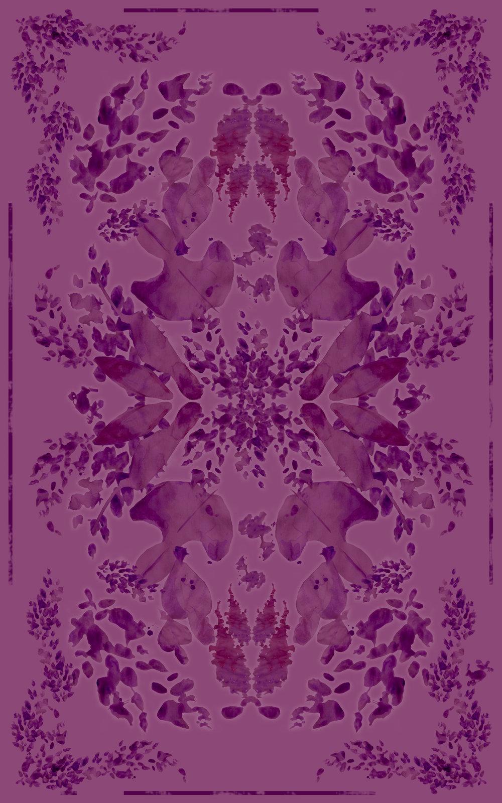 wisteria wine KK011