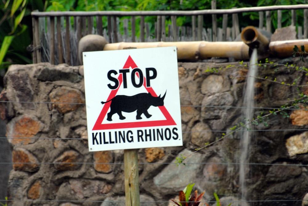 Kruger National Park Credit:(Paolo)