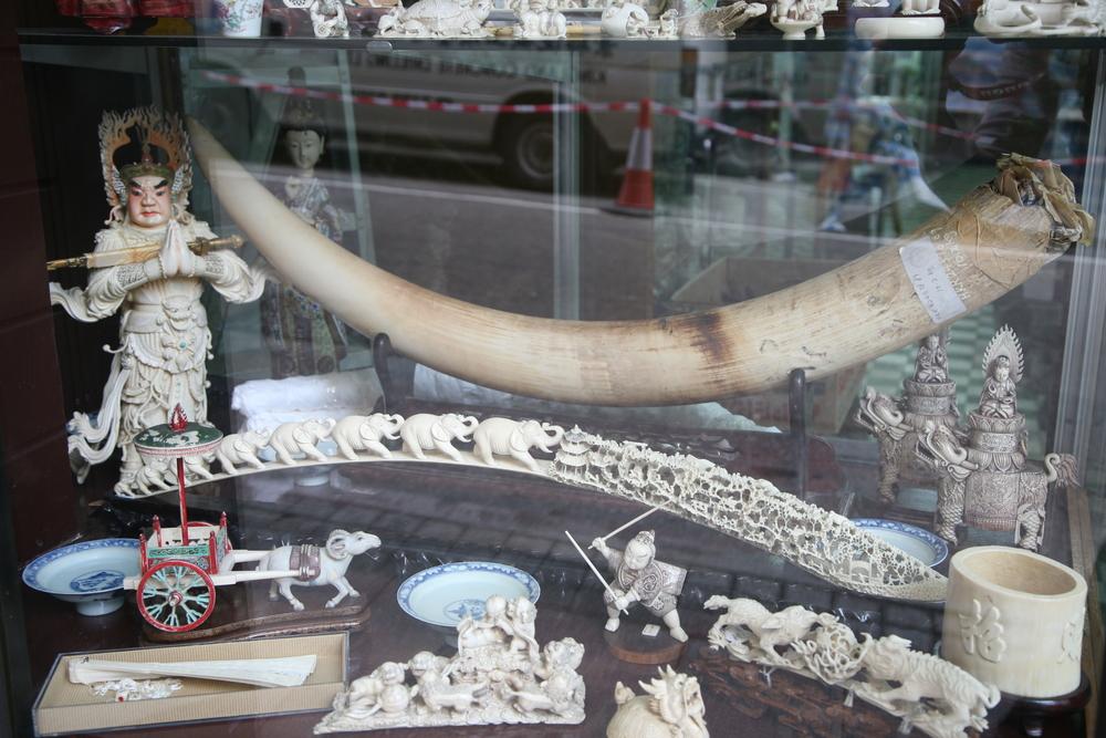Ivory in a shop window, Hong Kong Credit: Sputnik Mania