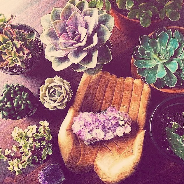 celebrate EARTH DAY AT @hersanctuarybuffalo with @blessingsbynature ---still spots left for tomorrow's succulent + crystal garden class-- learn about which crystals can help your garden grow + create your own tabletop garden -- register at hersanctuarybuffalo.com