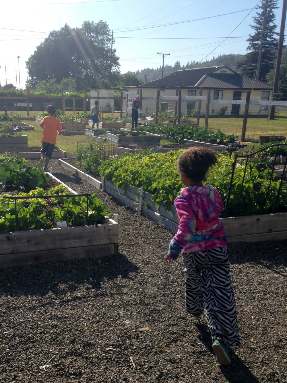 Some of our volunteers eager to help harvest from the garden!