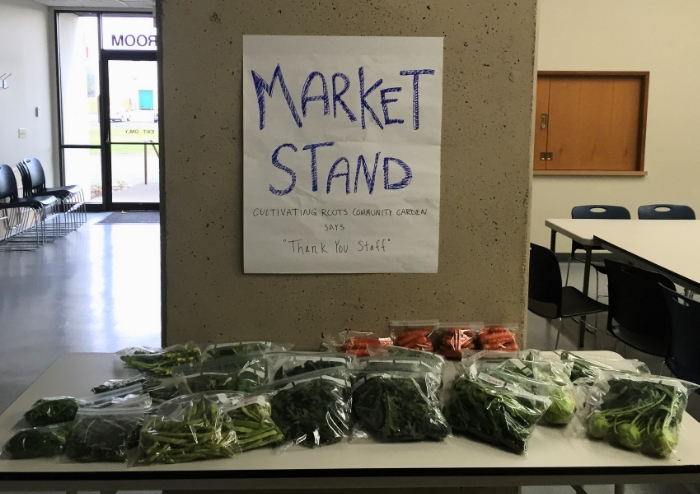 Even after the garden is closed, it keeps giving. 14 more lbs. of produce were harvested from the Cultivating Roots Garden last Friday by garden staff.