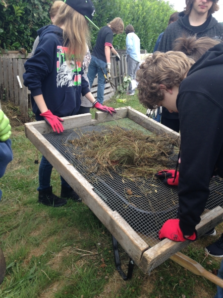 Working together to sift compost before adding it to the beds. Only the best makes it into the garden!