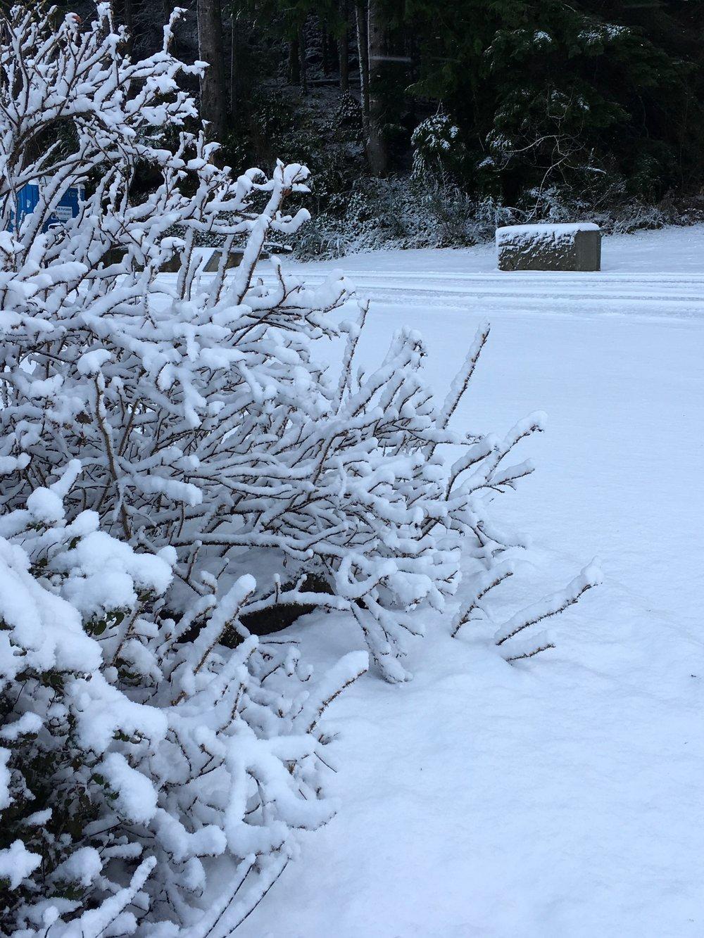 Lake Aberdeen February 2019