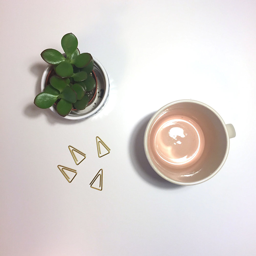 blush mug dassie artisan the room alive inspiration