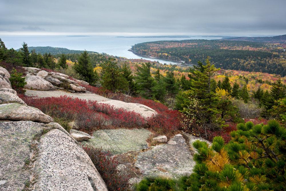 Acadia 9.jpg