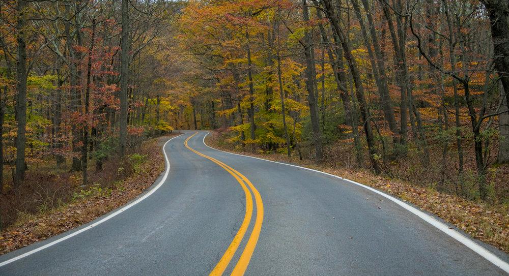 IMG_0663 road.jpg