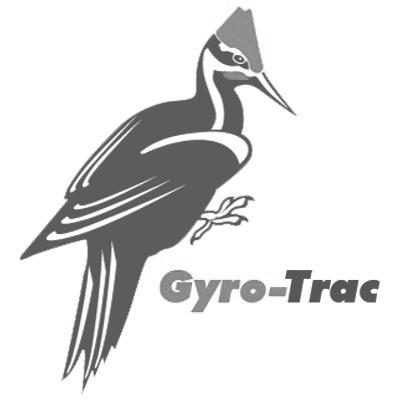 gyro.png