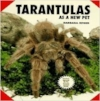 Tarantulas as            new pets