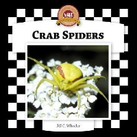 Crab Spiders