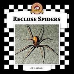 Recluse Spider