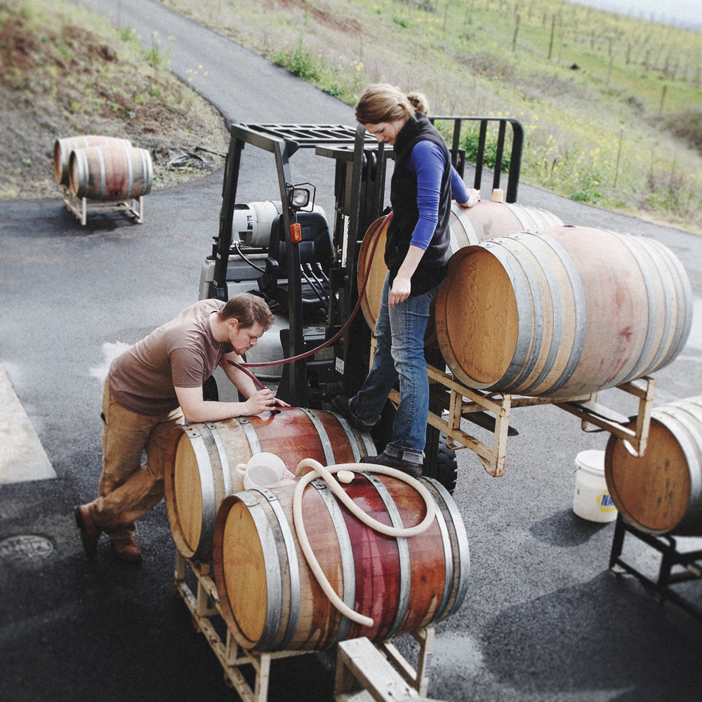 Jackson and Ayla racking the 2015 Pinot Noir