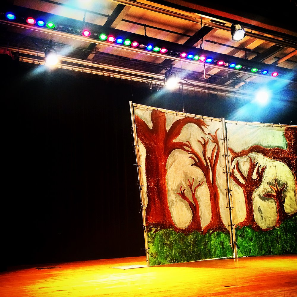 Teaching Children's Theatre with Lil Buds Theatre Company in Chicago, IL