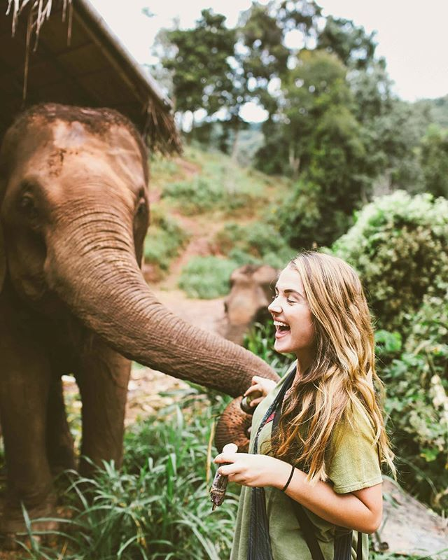 One year ago 🐘 . How quickly time flies. Feels like just yesterday I was stepping foot in Thailand for the very first time. Riding in tuk tuk's and hanging off the back of a moped - camera in one hand and clinging for dear life with the other. Eating all the veg food for dollars a day. Discovering a place that is more humid than Florida, something I never thought possible 😝 Memories are still so vivid I can almost taste them. I am so grateful for the many things travel has taught me, but most importantly I am grateful for an open mind and a renewed outlook on this little thing we call life. It's all about perspective ✨ . . . . . . . . . . .  #savetheelephants #chiangmai #travelphotography #passionpassport #wanderlust #girlslovetravel #girlsvsglobe #doyoutravel #gltlove #vegantravel #sheisnotlost #exploremore #nomad #femmetravel #girlaroundtheworld #dametraveler #darlingescapes #instapassport #instatravel #sheisnotlost #exploretocreate #traveldiaries #backpacking #iamatraveler #thailand #womenwhoexplore #tlasia #travelgram #thetravelwomen