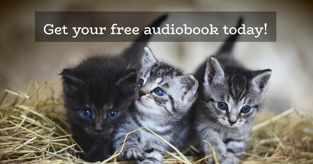get your free audiobook today.jpg