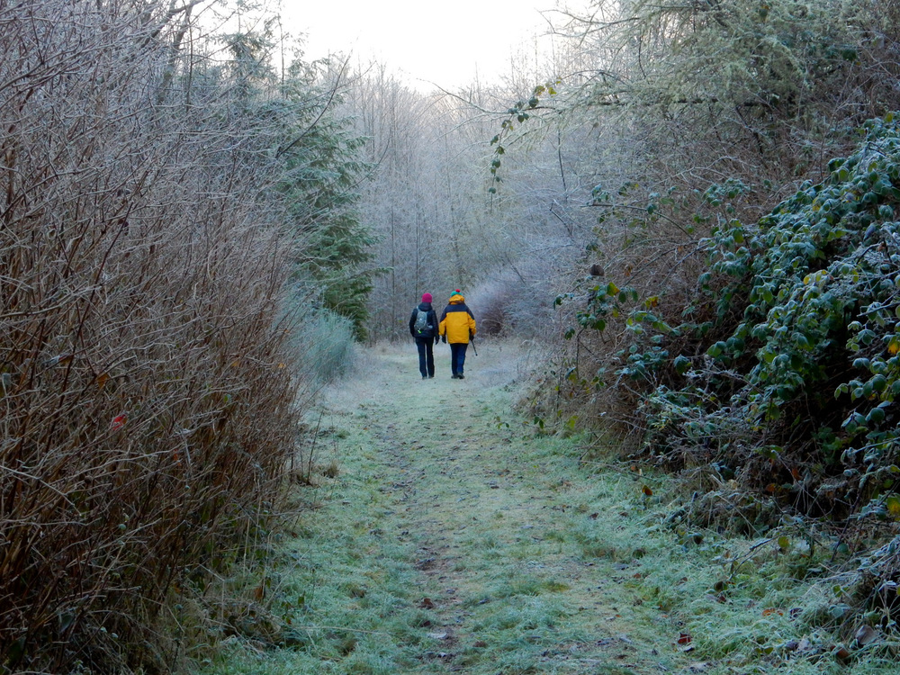 Alyce and Candice walk through a wintry land