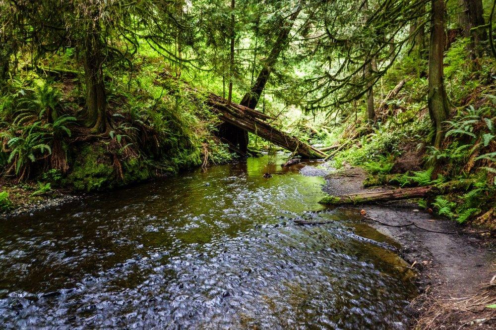 Ludlow Creek below Ludlow Falls