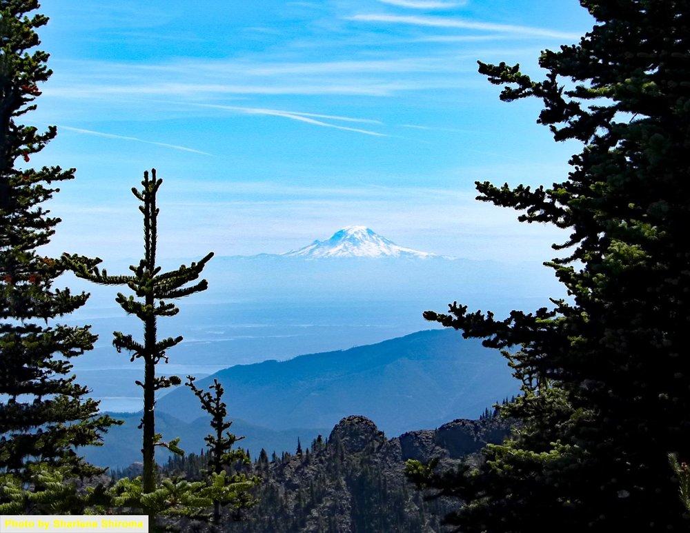One of the last views of Mount Rainier