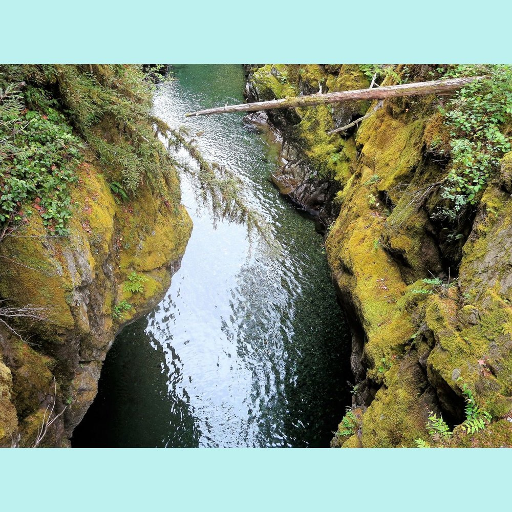 Gorge on Silver Falls trail