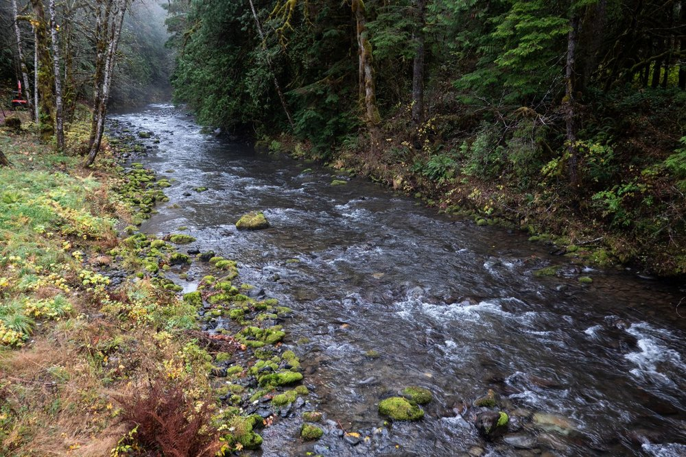 The Big Quilcene River