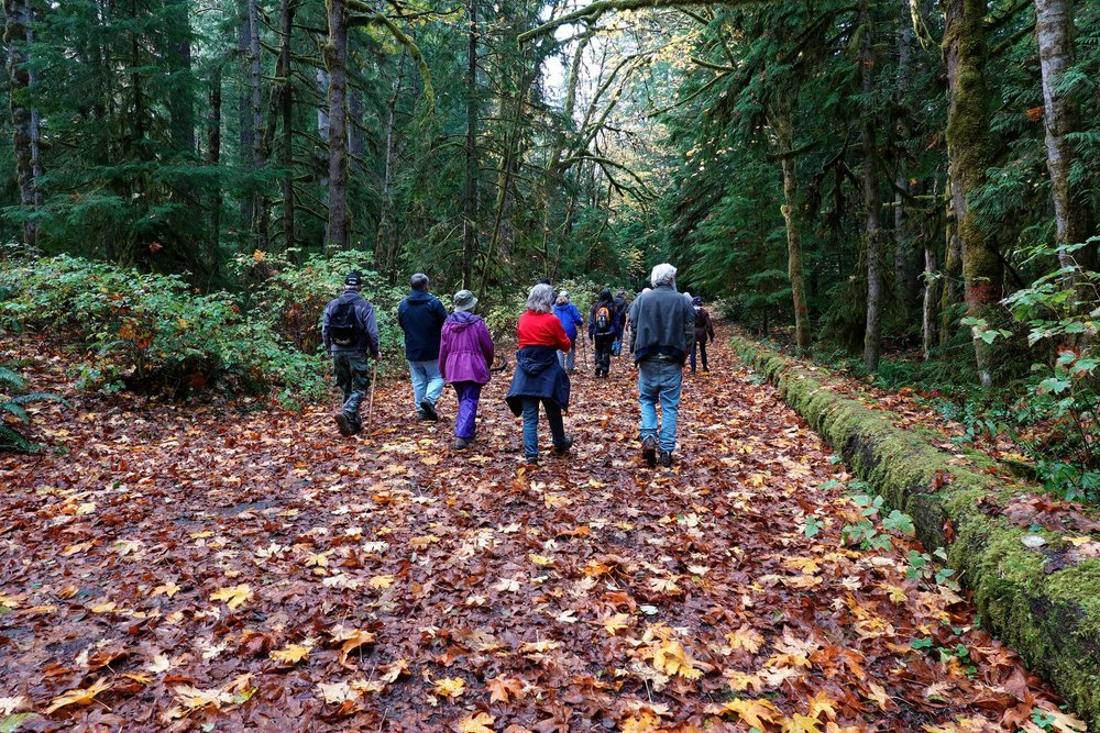 Hike number two begins – note all the fall leaves