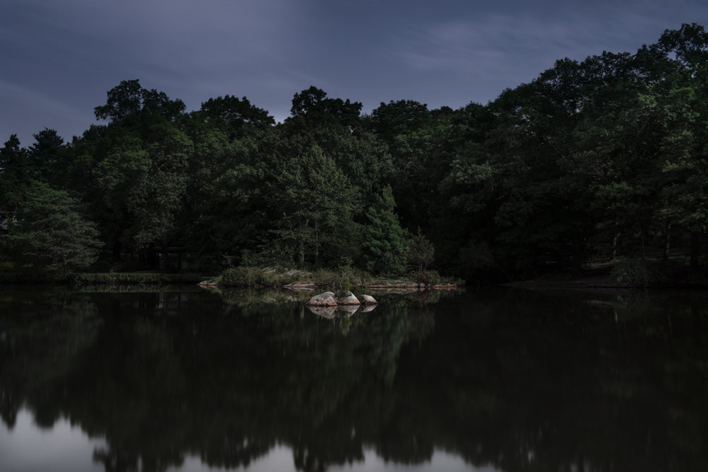 Weld Pond, Dedham