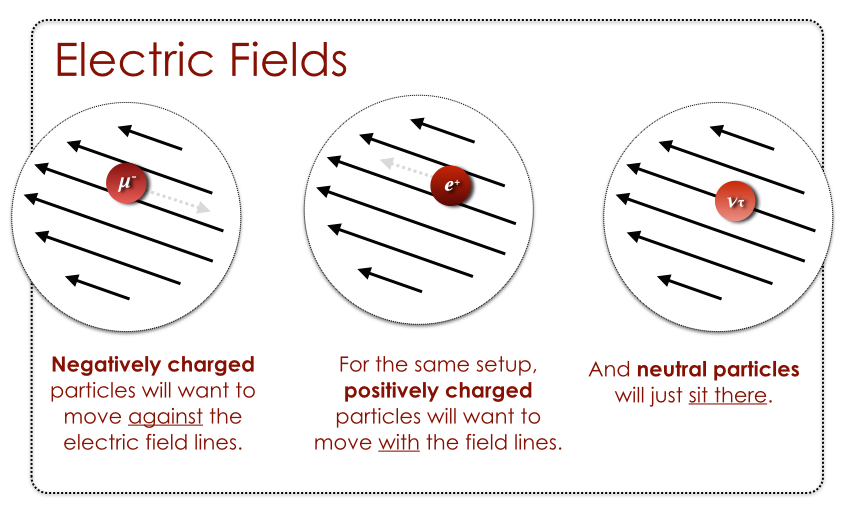 Icp 5 Electric Magnetic Fields Thomas G Mccarthy