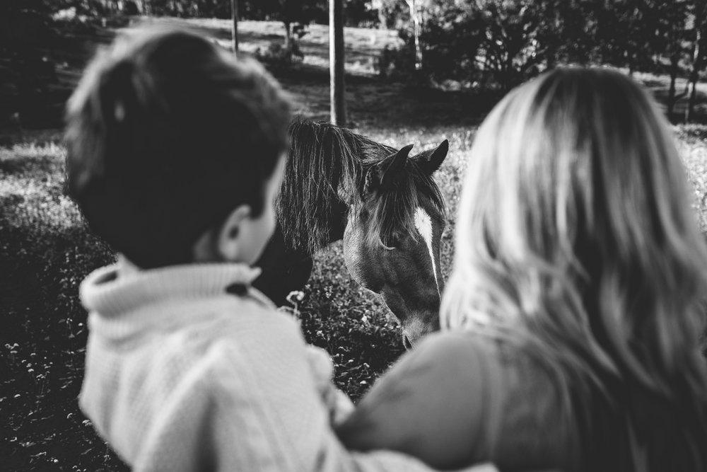 Brisbane family photographer-50.jpg