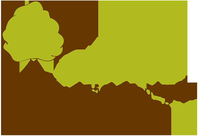 - Deep Roots Design & Landscape