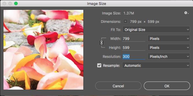 Prepara tus archivos para Impresión: Cómo encontrar la resolución de imagen en Photoshop