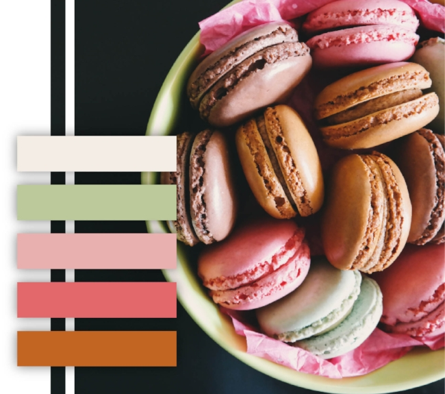 Macaroon color palette, light colors, pastel, pink, mint green, burnt orange, color scheme
