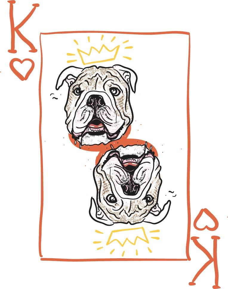 bulldogPlayingCards.jpg
