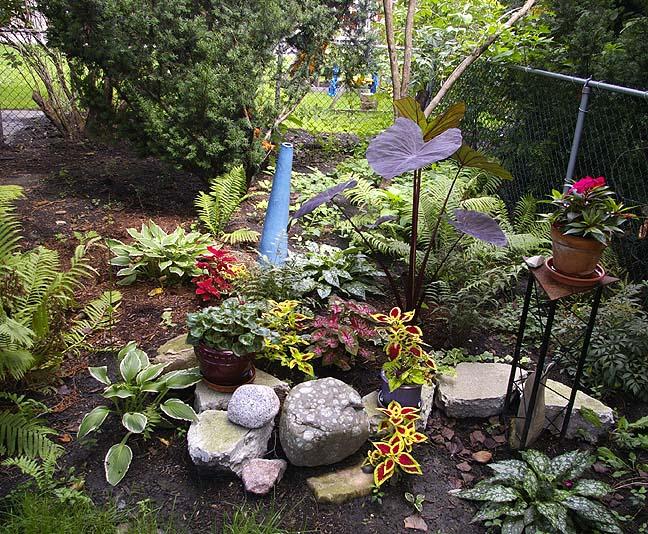 Bert's- Garden 4.JPG