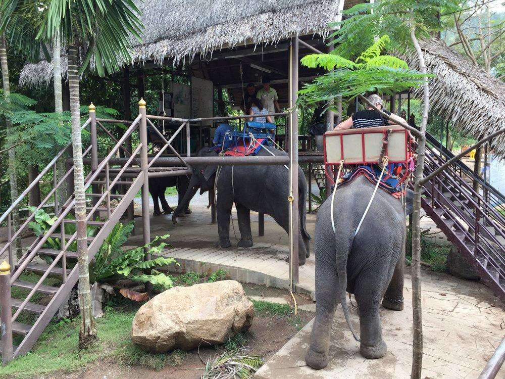 Elephant Village, Ko Samui, Thailand